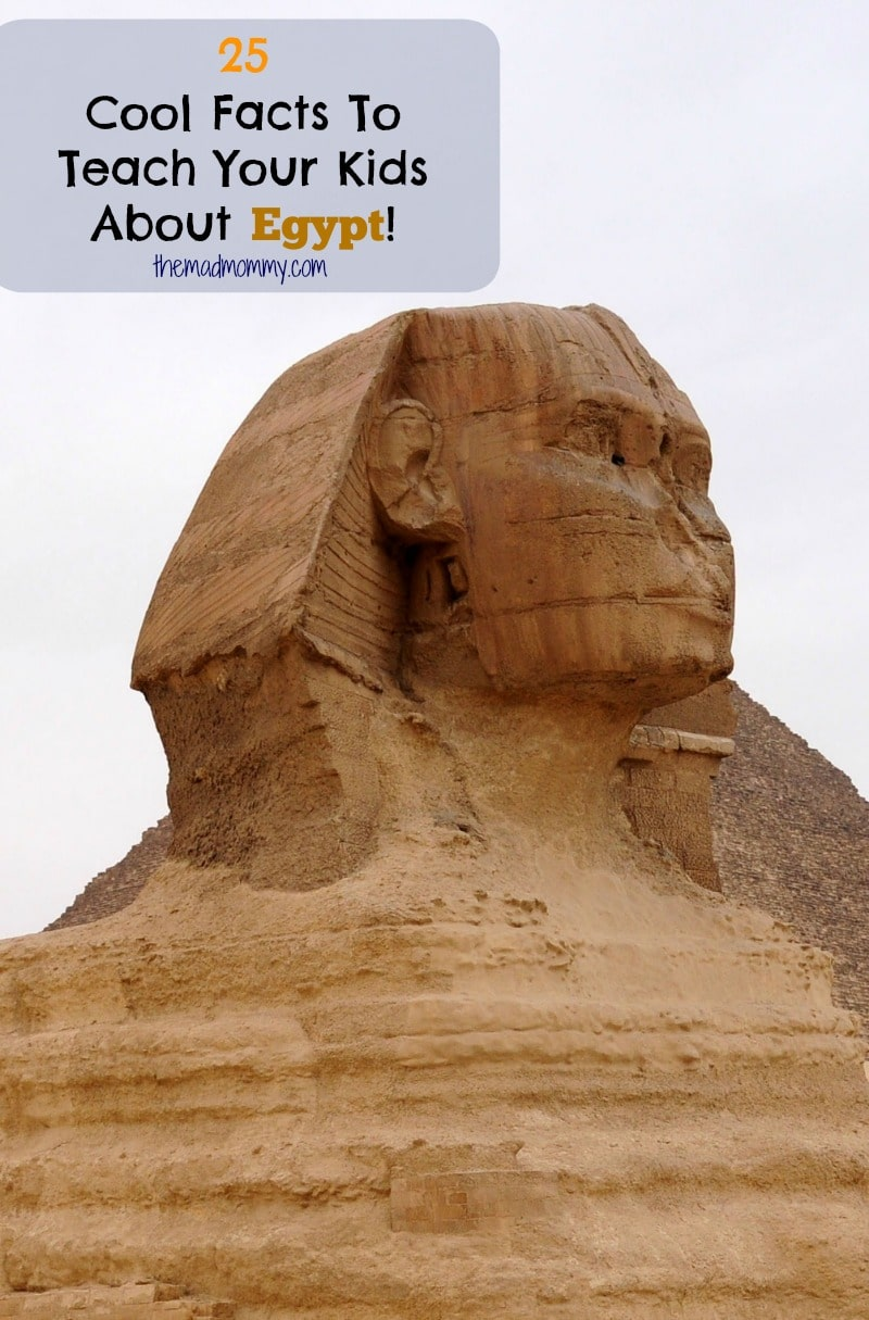 Did you can teach your children about exotic places without ever leaving your home? You can take take a virtual tour of almost any country in the world, like Egypt! I'll even get you started with these 25 cool facts about Egypt.