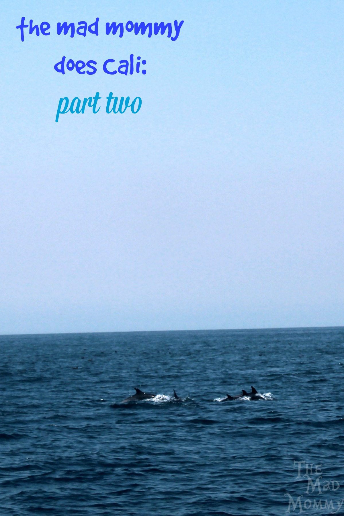 Whale watching has always been on my bucket list, so part two of The Mad Mommy Does Cali is all about the open water and watching for whales!