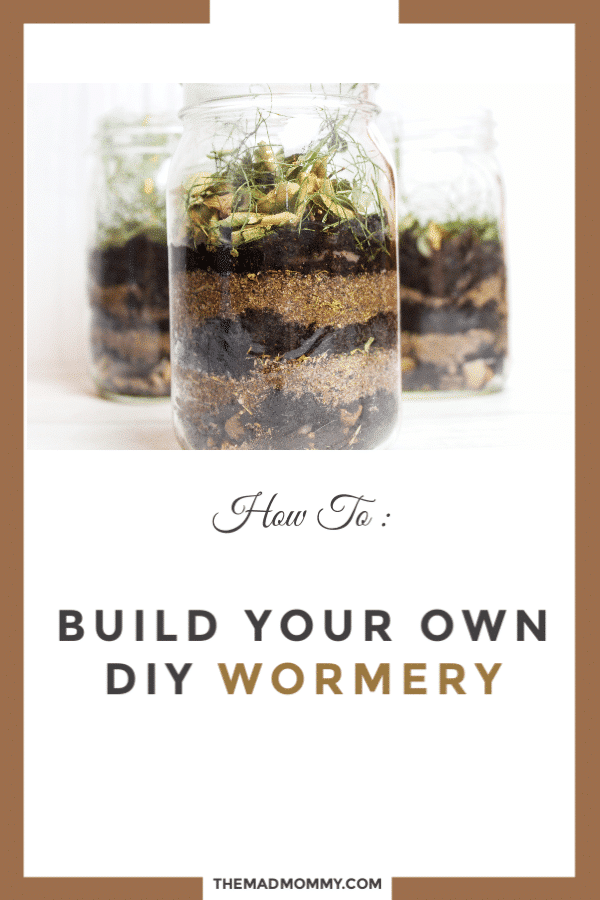 Has your child ever wondered what worms do all day? Well, now you can get crafty and show them the ways of the worm with this DIY Wormery Project. You can show your kids how worms move through different layers of the Earth and how they help with composting.