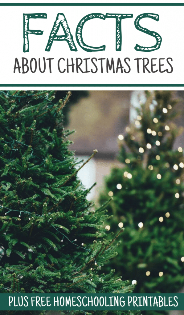 christmas printables homeschooling