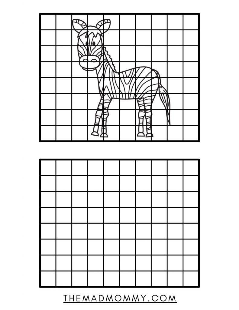 zebra drawing grid