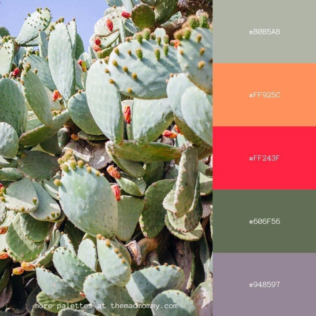 Desert Cactus Color Palette