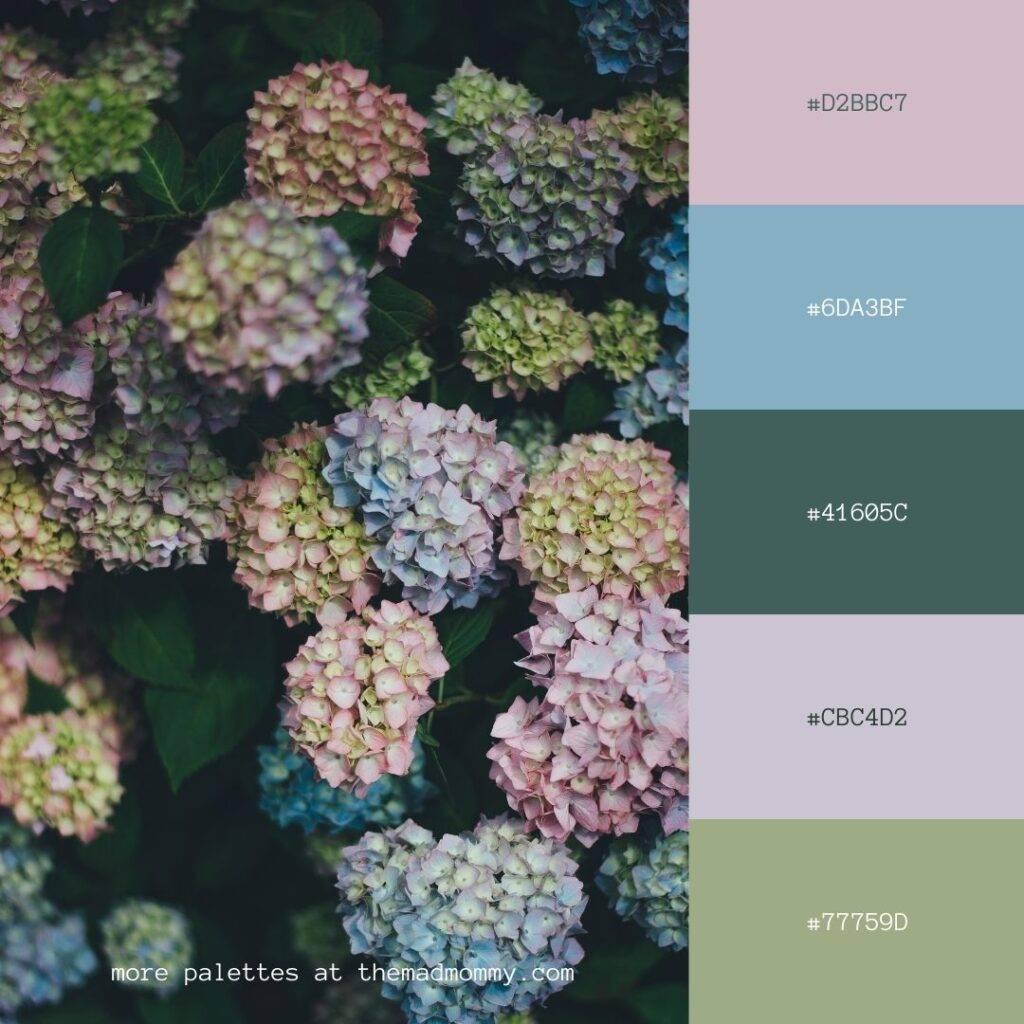 hydrangea color palette
