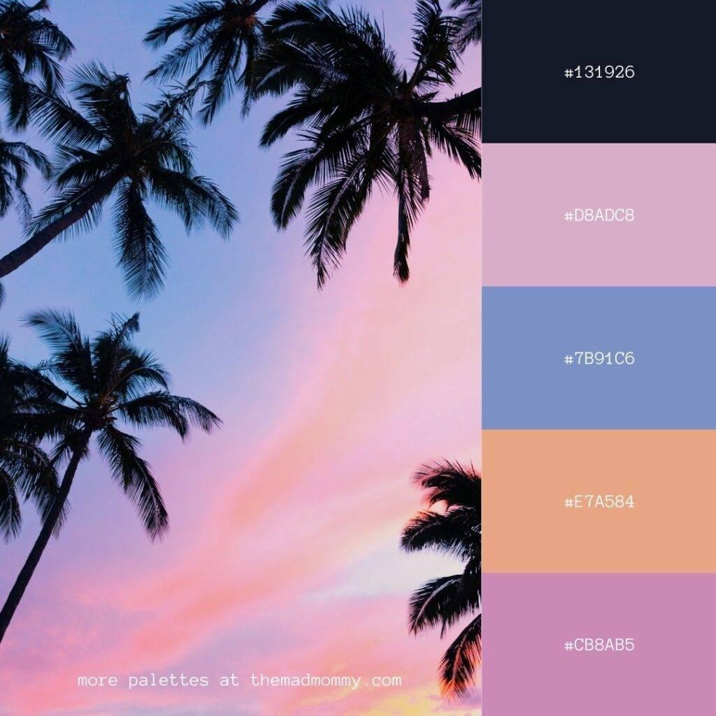 palm sky color palette